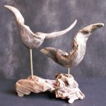 Driftwood Birds by Nigel Peterken
