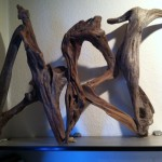 Driftwood ART by Nigel Peterken
