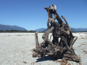 Tangle - Driftwood Art Sculpture