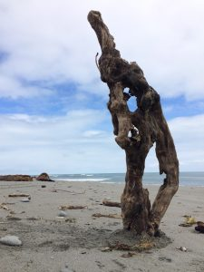 Ent - Driftwood Art Sculpture