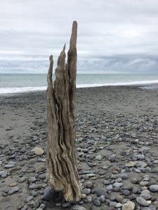 Ripple - Driftwood Art Sculpture