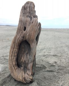 Big Mouth - Driftwood Art Sculpture