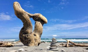 Torso - Driftwood Art Sculpture